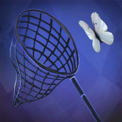 Schmetterlingsfänger