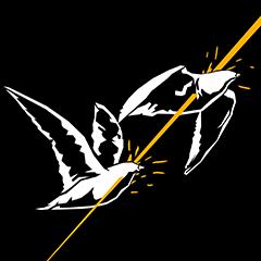 Zwei Vögel…